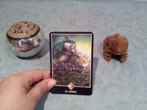 Significado de El Avaro en una lectura de tarot Osho